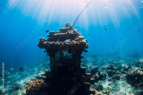 Obraz na plátně Underwater temple in ocean near Amed, Bali. Popular diving site