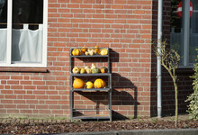 Several Ornamental Gourds In Front Of A House.