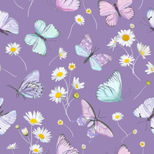 Seamless Daisy Flowers And Butterfly Vector Background. Spring Floral Watercolor Pattern