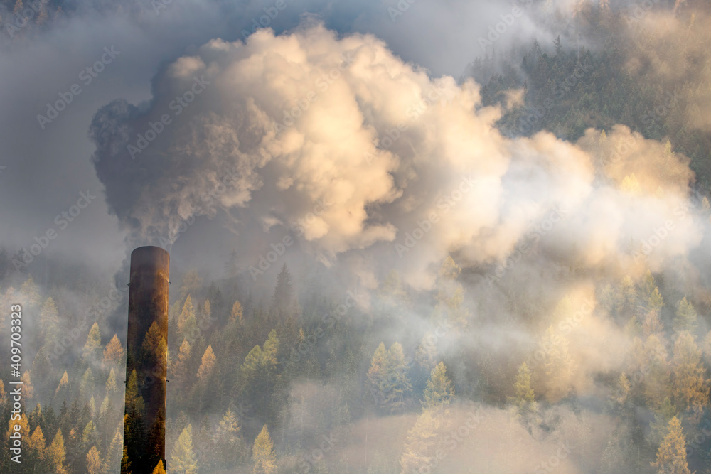 Fototapeta Double exposure of chimney smoke and forest.