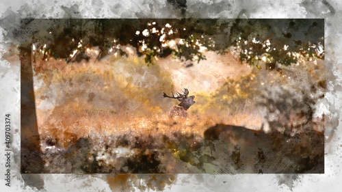 Digital watercolor painting of Beautiful image of red deer stag in vibrant golds and browns of Autumn Fall landscape forest © veneratio