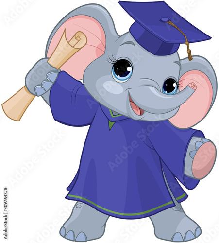 Elephant Graduates #409764379