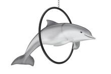 Tursiops Truncatus Ocean Or Sea Bottlenose Dolphin Jump Through Ring. 3d Rendering