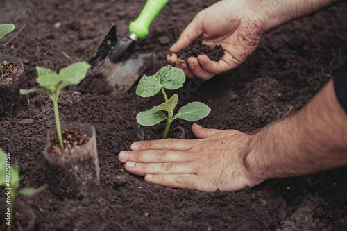 Photo Healthy organic food concept