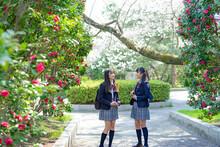 通学する女子学生2人