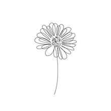One Line Vector Drawing Of Flower. Botanical Modern Single Line Art, Aesthetic Contour. Perfect For Home Decor, Wall Art Posters, Or T-shirt Print, Mobile Case. Continuous Line Drawing