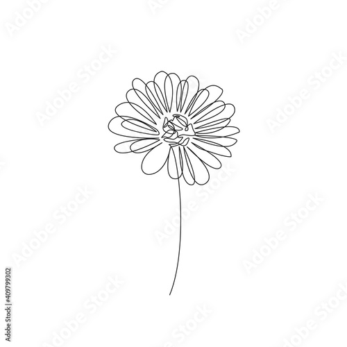 Photo One Line Vector Drawing of Flower