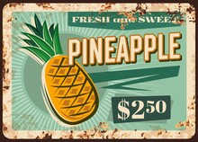 Pineapple Rusty Metal Plate, Vector Fresh Tropical Fruit Supply Vintage Rust Tin Sign, Ferruginous Price Tag For Market Or Store Retail Promo. Ripe Pineapple Exotic Fruit, Organic Fresh Orchard Crop