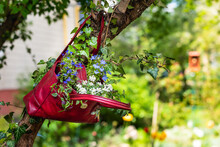 Flowers Growing In An Upcycled Bag, Hanging In The Garden. Sustainable Gardening Concept. Idea For A Romantic Flower Bed