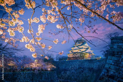 Twilight at Osaka castle during Cherry blossoms season © f11photo