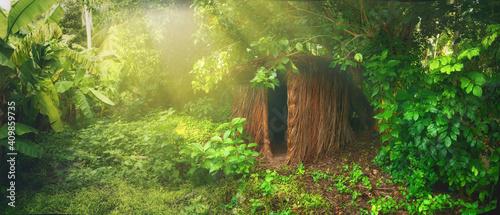 Tablou Canvas Lush green vegetation in jungle in morning sunlight