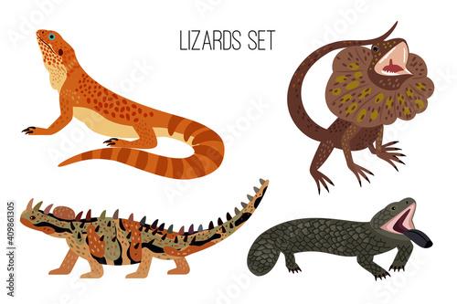 Obraz na plátně Colorful lizards
