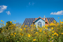 Modern House With Solar Panels At The Roof, Yellow Topinambur Flowers, Blue Sky