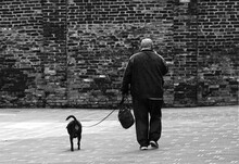 A Man Alone With His Dog