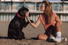 Side View Of Young Female Sitting On Sandy Shore With Adorable Black Labrador Retriever While Enjoying Sunset Together In Summer