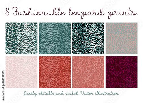 Set of seamless leopard patterns Wallpaper Mural