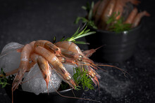 Raw Prawns Placed In Bowl With Ice Cubes And Green Herbs On Dark Table In Kitchen Of Restaurant