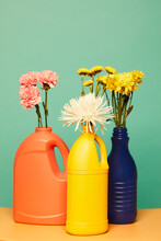 Various Blooming Flowers Placed In Colorful Plastic Bottles From Detergents Showing Concept Of Reusable Containers