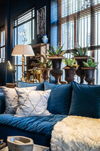 Fragment Of Interior Of Living Room With Cozy Blue Sofa With Cushions Placed Near Window Decorated With Green Plants In Vintage Pots