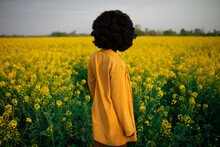 Back View Of Unrecognizable Young African American Female With Curly Hair Dressed In Black And Yellow Clothes While Standing Amidst Bright Yellow Flowers In Blooming Field