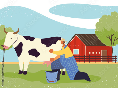 farm and agriculture farmer milks the cow Fototapeta