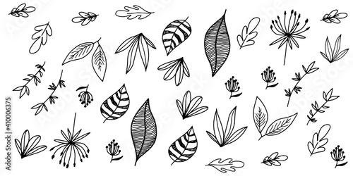 Fototapety, obrazy: Set hand drawn curly grass and flowers on white isolated background. Botanical illustration. Decorative floral picture. Set leaves floral hand drawn. Sketches of flowers, plants, leaves. Hand drawn