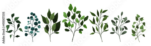 Collection of greenery leaves branch twig flora plants. Floral watercolor wedding objects, botanical foliage. Vector elegant herbal spring illustration for invitation card - fototapety na wymiar