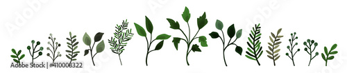 Fototapety, obrazy: Collection of greenery leaves branch twig flora plants. Floral watercolor wedding objects, botanical foliage. Vector elegant herbal spring illustration for invitation card