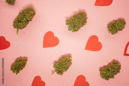 Fototapeta Cannabis buds pattern