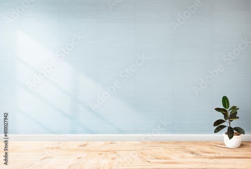 Obraz Plant against a blue wall mockup. Contemporary Living Room Interior. - fototapety do salonu