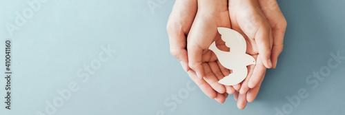 Obraz na plátně Adult and child hands holding white dove bird on blue background, international