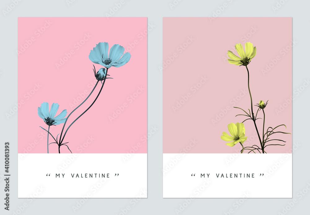 Fototapeta Minimalist botanical valentine greeting card template design, cosmos flowers