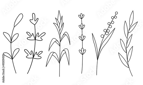 linear illustration of green twigs Fototapeta
