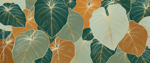 Fototapeta Luxury nature leaves background vector. Floral pattern, Tropical leaf with line arts, jungle plants, Exotic pattern with palm leaves. Vector illustration. obraz
