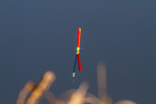 Fishing Float Sits Upright In The Water In Late Autumn