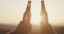 Beer Toast Hands Bottle Clink Salute Close Up Sun Sunset Golden Light