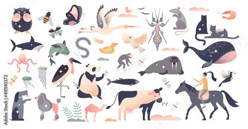 Fototapeta Animals set with various wildlife mammal species group tiny person concept obraz