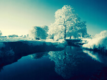 Majestic Winter Landscape With Trees Covered In Hoarfrost Reflected In The Water