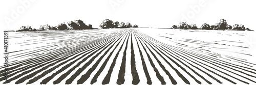 Obraz Vector farm field landscape. Furrows pattern in a plowed prepared for crops planting. Vintage realistic engraving sketch illustration. - fototapety do salonu