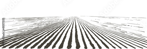 Fotografiet Vector farm field landscape