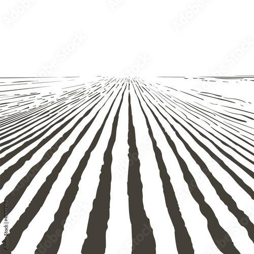 Photo Vector farm field landscape