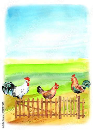 Happy chicken clipart Fototapete