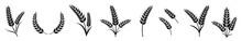 Wheat Ears Icon Set, Bakery Vector Illustration