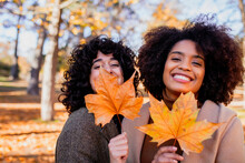 Smiling Friends Holding Dry Maple Leaf While Standing At Park