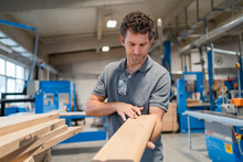 Portrait Of Carpenter Examining Plank Of Wood