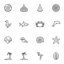 Summer Related Line Icons Set, Outline Vector Symbol Collection, Linear Style Pictogram Pack. Signs, Logo Illustration. Set Includes Icons As Watermelon, Fresh Fruits, Shellfish, Dolphin, Palm Tree