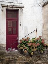 Paris Red Door
