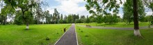 Panoramic View Of Green Lawn In Public Park