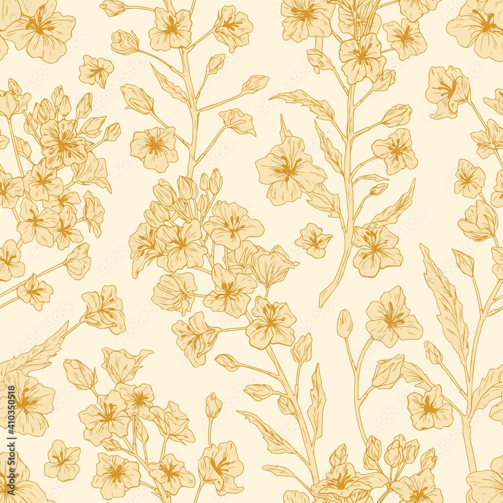 Fototapeta Elegant seamless pattern of rapeseed plant or canola flowers. Endless repeatable floral texture in retro style. Backdrop design for printing. Hand-drawn monochrome detailed vector illustration