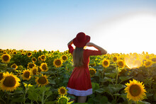 Young Girl In A Red Dress And Hat Meets The Sunset In A Field Of Sunflowers